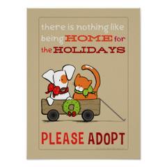 Corona-animal-shelter-pet-adoption