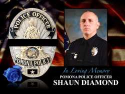 shaun-diamond-pomona