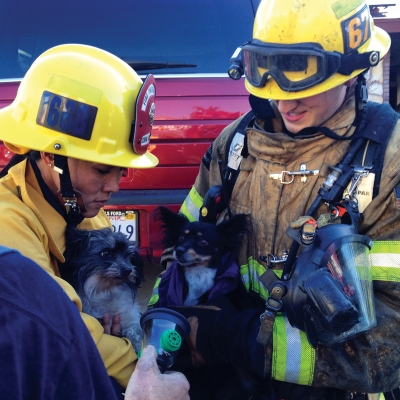 (Photo Courtesy:  Chino Valley Fire District) Traumatized, but okay, two pups are rescued from a house fire by CVFD Fire Inspector/Community Liaison Officer, Lena Lin; and Firefighter/Paramedic, Brett Underwood.