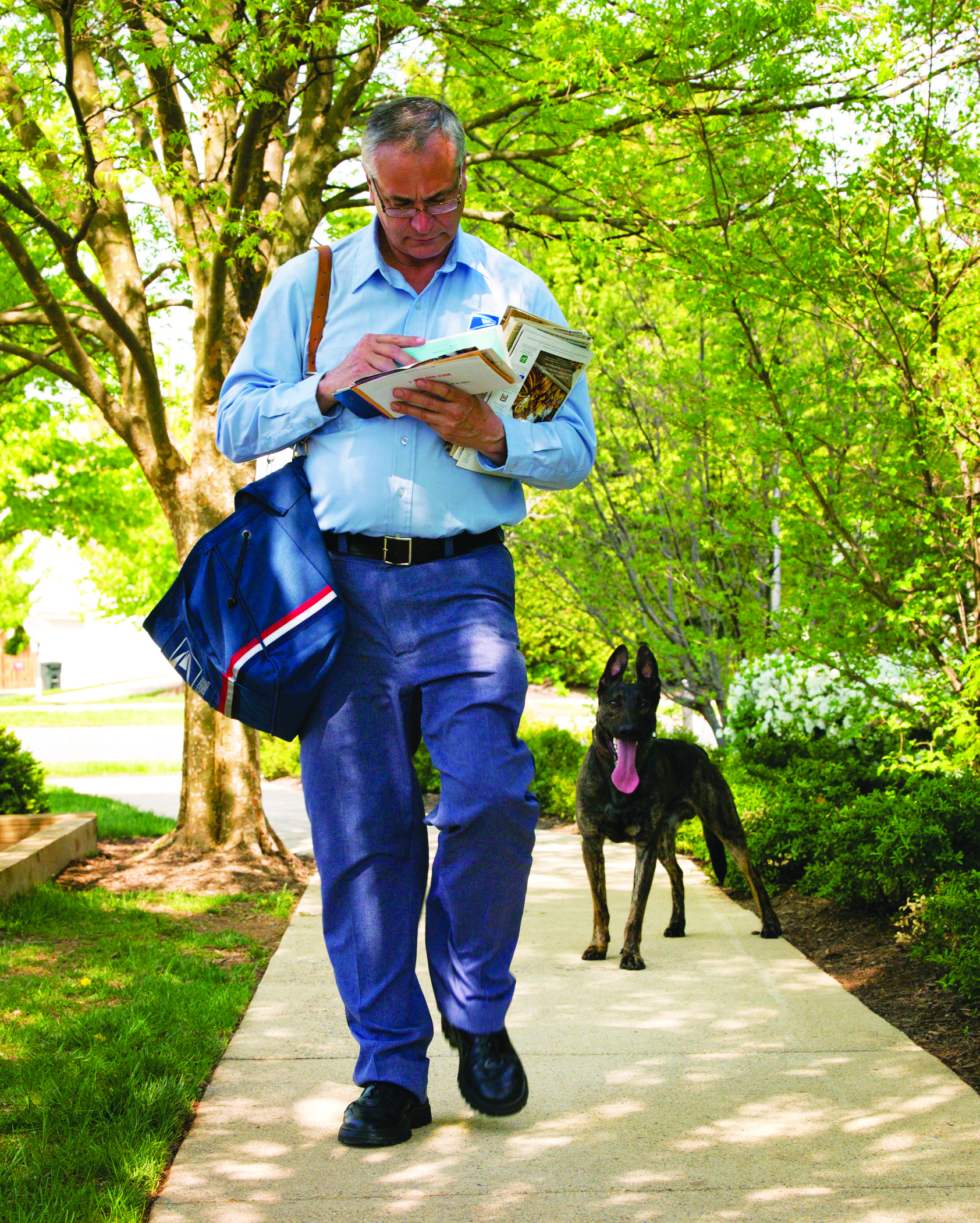USPS Carriers Attacked By Dogs