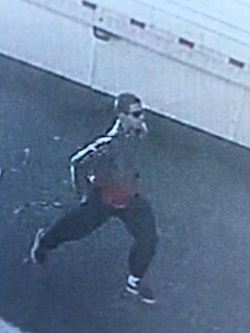 Chino PD is asking for the public's assistance in identifying the theft suspect pictured above.
