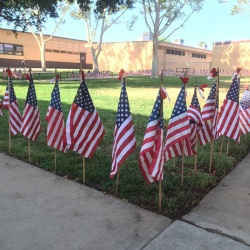 Photo courtesy: CNUSD School decorated the campus with American flags.